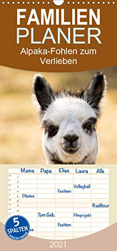 Alpaka-Fohlen zum Verlieben - Familienplaner hoch (Wandkalender 2021, 21 cm x 45 cm, hoch)