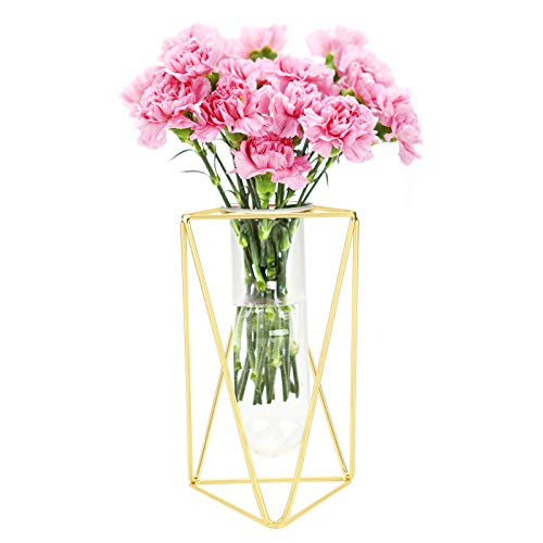 Flower Vase,Rose Gold/Gold Geometry Glass Vase with Metal Frame and Test Tube Glass Vase Simple Glass Test Tube Flower Planter Vases Cylinder Vase for Indoor Office Wedding Home Decor Gold Large
