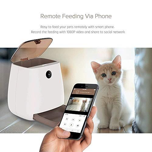 Syczdwsj Alimentador automático 3L del gato del perro - Wi-Fi automática inteligente for mascotas alimentador Triturador, la cámara 1080P HD WiFi for mascotas con visión nocturna, expediente del vídeo