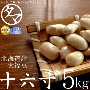 北海道産A級品 十六寸・大福豆 5000g