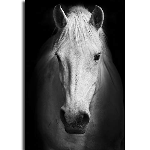 Impression sur toile - Impression abstraite en noir et blanc - Animaux africains - Impression sur toile - Décoration d'intérieur, cheval, 40\