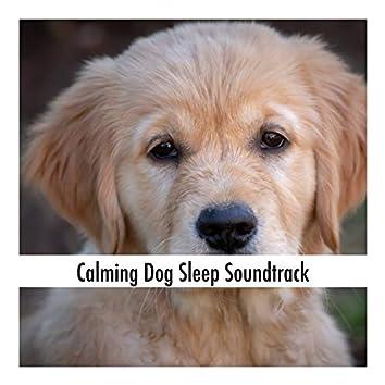 Calming Dog Sleep Soundtrack