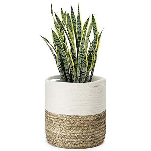 Flexzion Plant Basket Modern Urban Boho Rattan Cotton Rope Basket Indoor Planter Holder (Up to 10 Inch Flower Pot) Macrame Woven Storage Organizer Bin with Handles Water Hyacinth Home Decor 11' x 11'