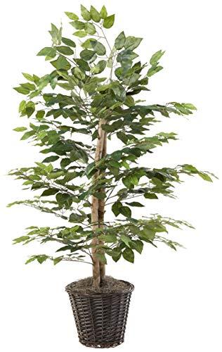 Vickerman 4-Feet Artificial Natural Ficus Bush with Dark Green Leaves in Decorative Rattan Basket