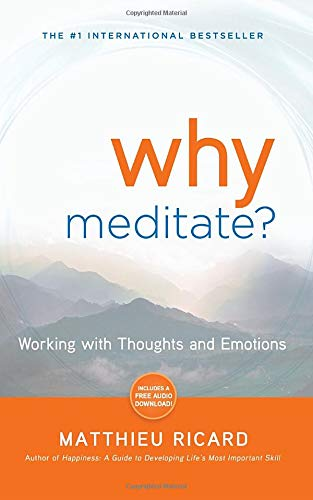 Image of Why Meditate: Working with Thoughts and Emotions