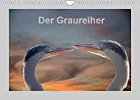 Der Graureiher (Wandkalender 2022 DIN A4 quer): Er ist ein toller Segler und Fischer. Immer sehr aufmerksam und sehr schreckhaft. (Monatskalender, 14 Seiten )