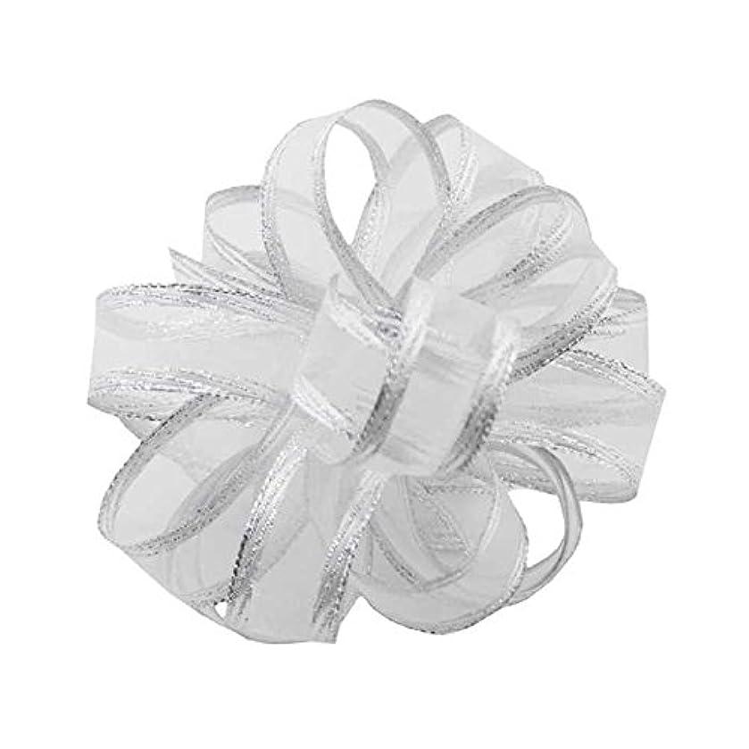 Berwick Offray Regal Chiffon Ribbon-5/8 Wide X 25 Yards-White/Silver Ribbon