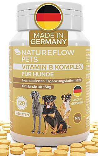 Complesso Vitaminico B per Cani - Alta dose delle vitamine b per cani dai 15 kg - 120 Compresse - Con Vitamina K3, acido folico, calcio e biotina per cani - Integratori per cane fabbricato in Germania