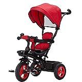 Sistema de viaje para bebés y niños, triciclo para montar para niños con toldo seguro para el sol, almacenamiento en la espalda y silla de paseo telescópica ajustable (color: rojo) FDWFN (color: rojo)