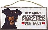 Holzschild Tierschild Hund Deko Deutscher Pinscher
