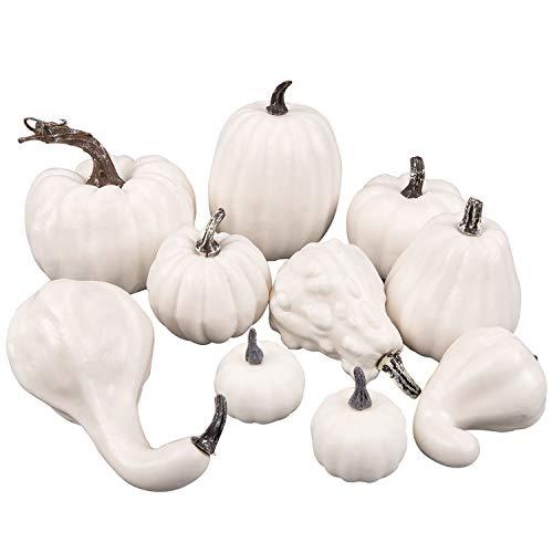 Whaline - 10 calabazas artificiales blancas variadas de espuma falsa para otoño de acción de gracias, Halloween, Navidad, hogar, jardín, mesa, decoración de chimenea, manualidades, 10 unidades