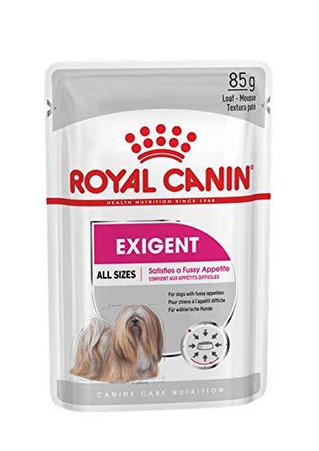 ROYAL CANIN Exigent 85g x 12 Sobres ✅