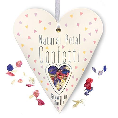 Naturale petalo coriandoli