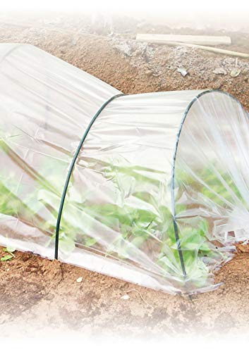 Vilmorin - Película de protección para jardín (Polietileno, 2 x 210 m), Transparente