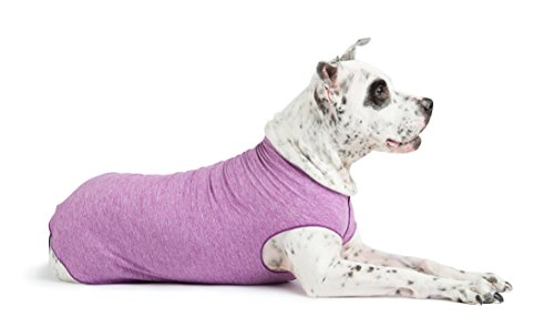 Gold Paw Sun Shield Dog Tee – T-Shirt for Canines – UV Protection, Pet Anxiety Relief, Wound Care – Protects Against Foxtails, Aids Alopecia - Machine Washable, All Season – Size 14 – Violet
