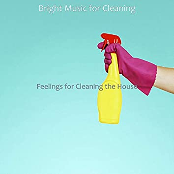 Feelings for Cleaning the House
