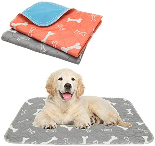 """Mihachi Washable Dog Pee Pads 2 Pack for Small Dogs Puppy Training Pads Waterproof Reusable Whelping Pads 24"""" x 16"""" Bone Style Grey & Orange"""