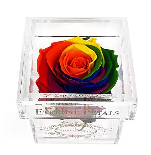 Una rosa reale al 100% che dura un anno - il regalo perfetto per donne e uomini, per anniversari, compleanni (arcobaleno)