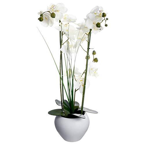 Orchidée et vase en céramique - 50 x 28 x 53 cm - Blanc