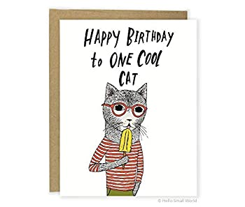 Funny Cat Birthday Greeting Card Cool Cat Card Friend Birthday Cute Cat Pun Birthday Card Punny Card Food Pun