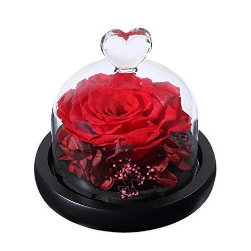 ANLUNOB Rosa encantada Hecha a Mano Rosa para Siempre - Regalo del día de Aniversario Rosa preservada - Regalo de cumpleaños Flores Frescas - Anuncio de Belleza La Rosa de la Bestia para Novia