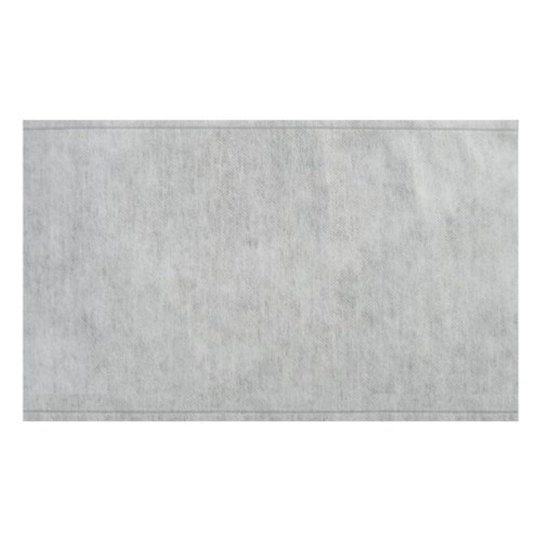 ちらつきできればマイコン不織布袋 E (25-35) 2000枚