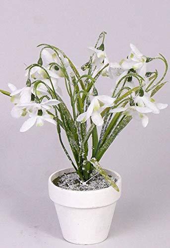 artplants.de Set de 6 x Campanillas de Invierno Artificial LOUSIE en Maceta, con Nieve, 25cm, Ø 5cm – Galanthus…