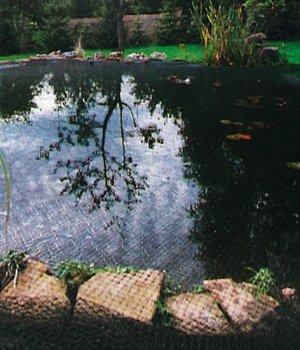 Siena Garden -   Teichabdecknetz,