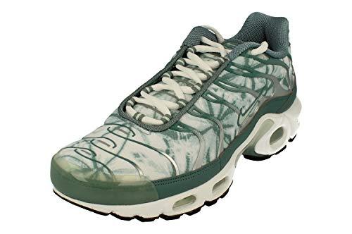 Nike Air MAX Plus OG Hombre Running Trainers CI2301 Sneakers Zapatos (UK 7.5 US 8.5 EU 42, Subway fibreglass White 300)