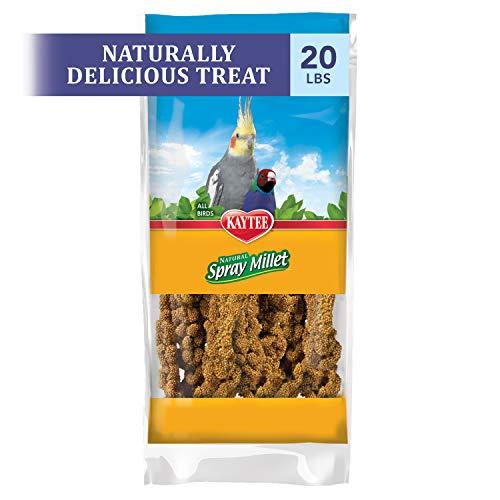 Kaytee Gold Spray Millet, 20 Lb