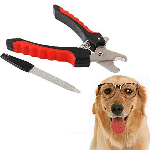 Haustier-Nagel-Trimmer Hund Nagelknipser Nagelfeile Set Razor Sharp Blade-Sicherheitsschutz Robuste Anti-Rutsch-Griff Profi-Pflegenwerkzeug Empfohlen for Groß und Klein Tier Veterinariansd Huangchuxin