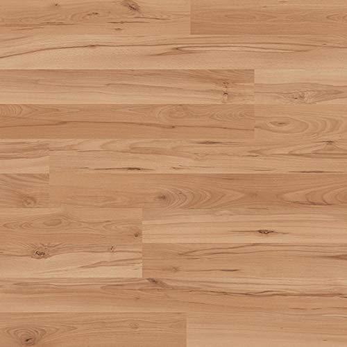 Kaindl Klick Laminat | Bodenbeläge Laminat in vielen Ausfürhungen Eiche hell Eiche nordisch Eiche grau und dunkel (Classic Touch | 7mm, Buche | Serina