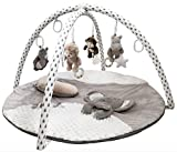 Best Activity Gyms - Gabby Grove Gentle Jungle Educational Baby Activity Gym Review