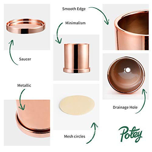 "POTEY Ceramic Plant Pots with Saucers - 3.8"" Flower Planter Indoor with Drainage Medium Container Minimalism Cylinder Glazed - Rose Gold"