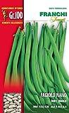 Franchi sementi semi di fagioli e fagiolini nani e rampicanti in confezioni varie (nano boby bianco, 100 grammi)