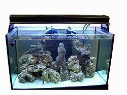 Rimless Deep Blue Reef Ready Edge75 Aquarium