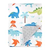 HOMRITAR Baby Blanket for Kids Super Soft Minky Blanket with Dotted Backing, Toddler Blanket with Dinosaurs Multicolor Printed 30 x 40 Inch(75x100cm)
