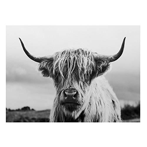 Schwarz-Weiß-Hochlandkuh Abstrakte Leinwand Malerei Wandkunst Poster Shaggy Yak Kuh druckt Tier druckbare Stier Bild 60x80cm (24x32in) Ungerahmt