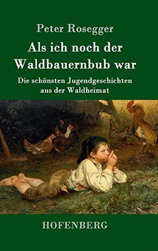 Als ich noch der Waldbauernbub war: Die schönsten Jugendgeschichten aus der Waldheimat