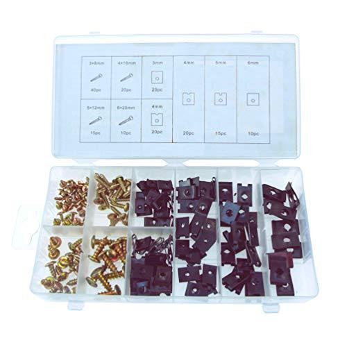 Grapas y Tornillos de Fijación Surtido de 170 piezas