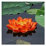 LIUSHENGFUBH Estatuas para jardín Lotus Pond Piscina Flotante Bañera decoración del jardín Mat for el hogar Acuario Estanque de jardín (Color : B, Size : 15cm)