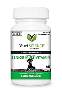 VetriScience Laboratories - Canine Plus Senior Multi Vitamin for Dogs 60 Chewable Tablets