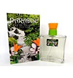 Parfum generique Femme Eiden / PARADISE EDT 100ml grande marque