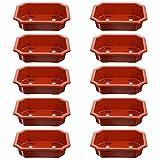 Holibanna 10 Unidades de Macetas de Entrenamiento de Bonsai Rectangular Macetas de �rbol de Bonsai Macetas de Flores con Orificio de Drenaje Apilables Suculentas Macetas de Cactus