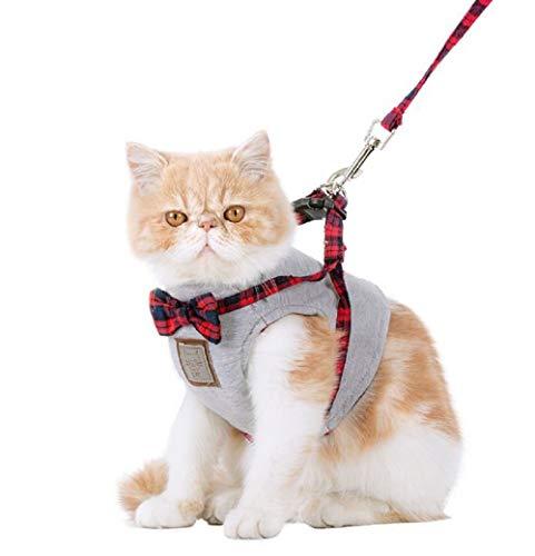 GDDYQ Kattendraadgordel, Britse stijl, comfortabele verstelbare kattenriem, set