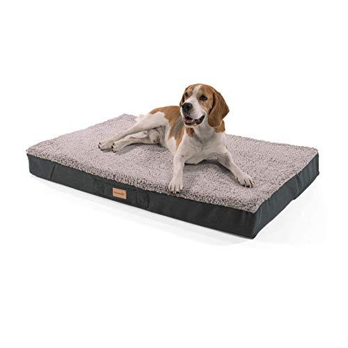 brunolie Balu großes Hundebett in Grau, waschbar, orthopädisch und rutschfest, kuscheliges Hundekissen mit atmungsaktivem Memory-Schaum, Größe L (100 x 65 x 10 cm)