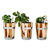 Small Plant Pot Set