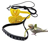 TBWHL Adjustable Parrot Bird Harness Leash Set Anti-bite Training Harness for Parrots Outdoor Flying Rope for Cockatiel Small Birds Cockatiel Monk Parakeet Conure Crested Myna S (Yellow)