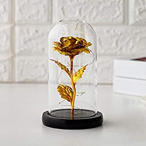 beauty and the beast rose gifts kit – shcha eternal rose flowers with led light in a glass dome colorful silk forever rose romantic home decor gift for mothers day/valentines/birthday(golden) silk flower arrangements