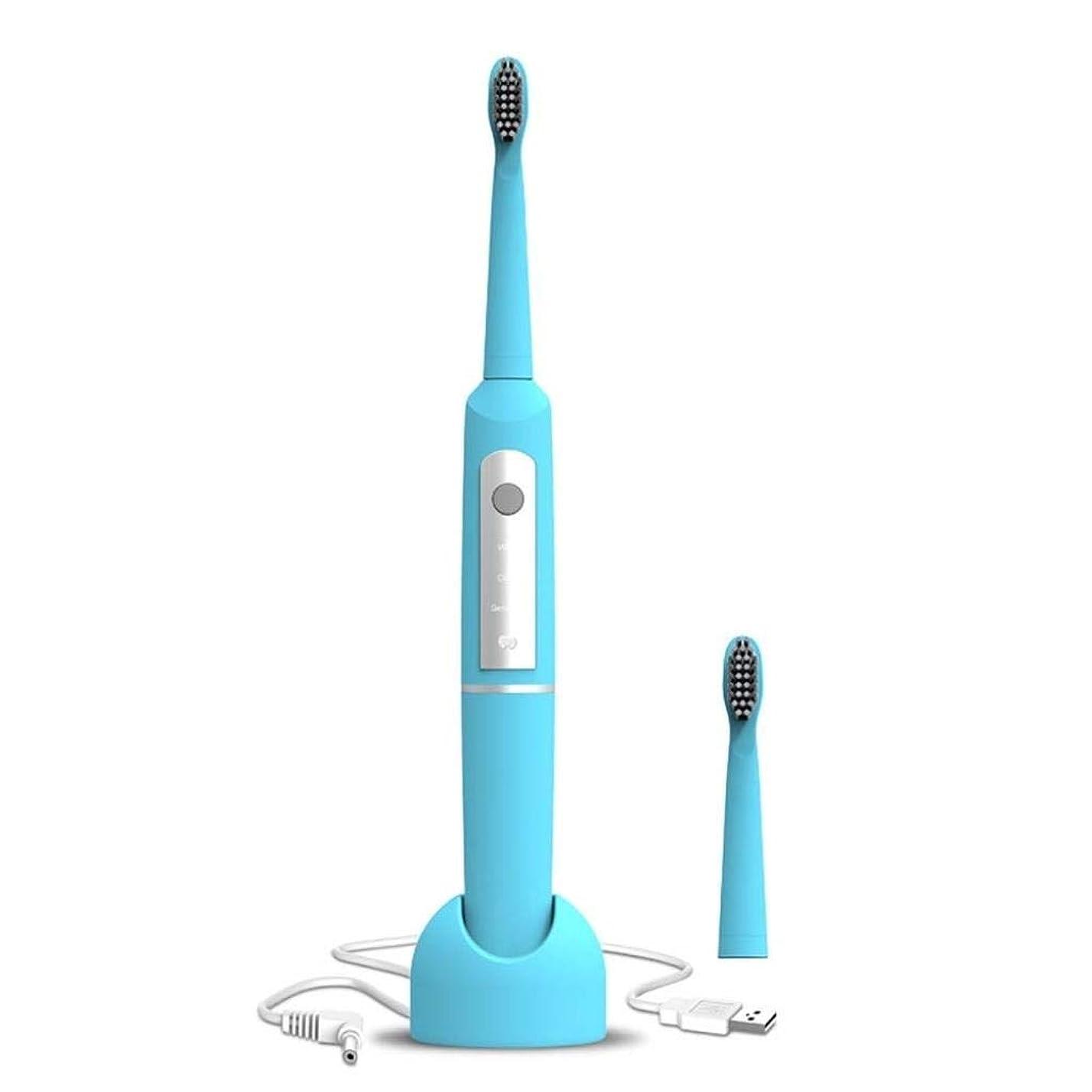 本を読む嵐の印刷する電動歯ブラシ、1つのコネクティングハンドル、2つの交換可能な歯ブラシヘッド付き防水、タイミング機能付き、USB充電、少なくとも40日間の使用 (Color : Blue)